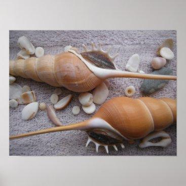 Ocean Themed Seashell, Nautical, Beach, Summer, Custom Poster