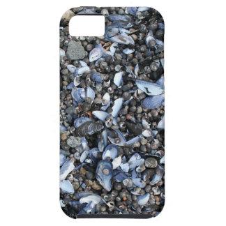 Seashell New England iPhone Case