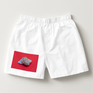 Seashell on a red background boxers