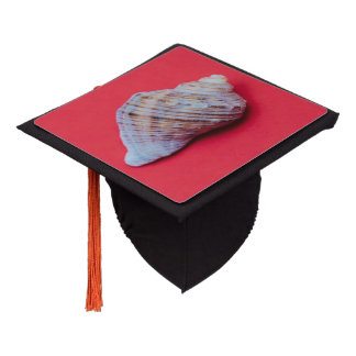 Seashell on a red background graduation cap topper