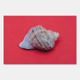 Seashell on a red background yard sign