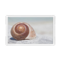 Seashell On Beach | St. Petersburg, Fl Acrylic Tray
