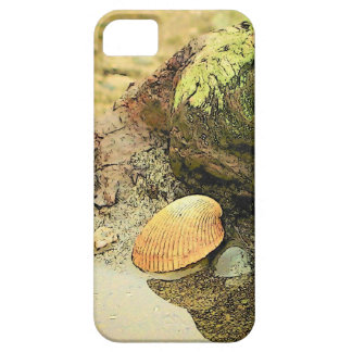 Seashell on Driftwood iPhone 5 Case