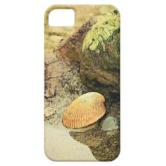 Seashell on Driftwood iPhone SE/5/5s Case