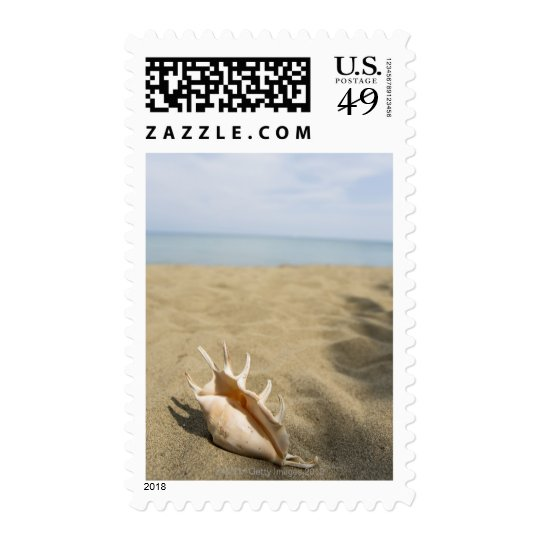 Seashell on sandy beach postage