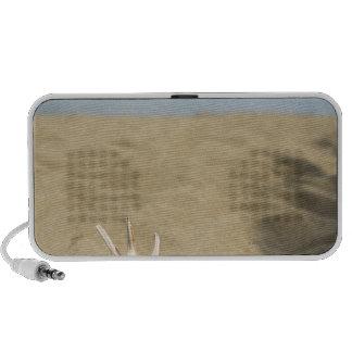 Seashell on sandy beach portable speaker