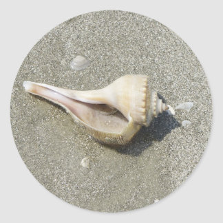 Seashell Pegatinas Redondas
