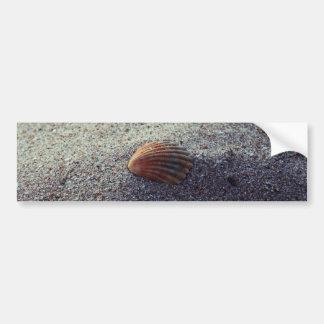 Seashell Pegatina Para Auto