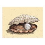 Seashell perfecto de la perla postal