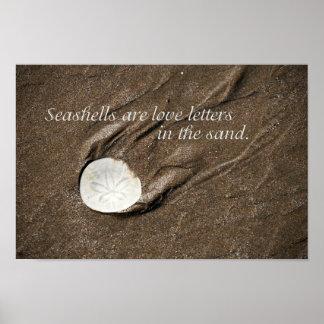 Seashell Poster