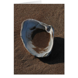 Seashell, Prince Edward Island Cards