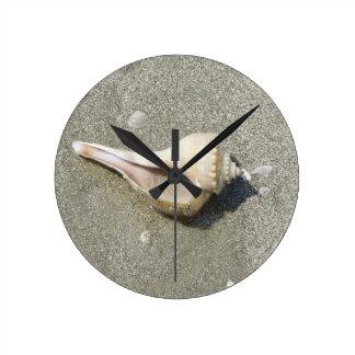 Seashell Reloj