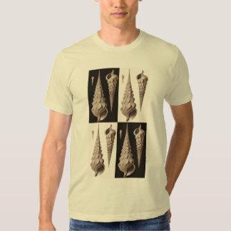 Seashell Retro Cream and Brown T-Shirt