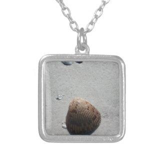 Seashell romántico en la playa en la Florida Grimpolas Personalizadas