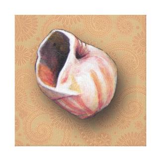 Seashell rosado bonito de la playa lona estirada galerías