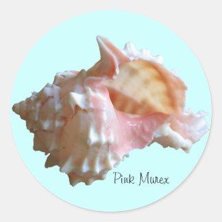Seashell rosado del Murex Pegatina Redonda