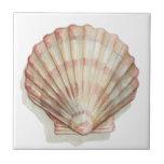 Seashell rosado y poner crema azulejo cuadrado pequeño