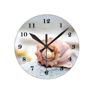 Seashell clocks seashell wall clock designs zazzle for Seashell wall clock