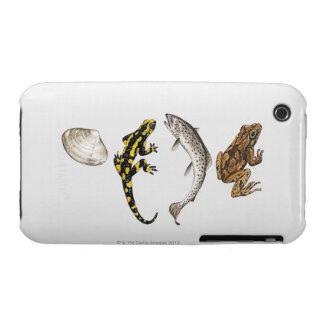 Seashell, Salamander, salmón Case-Mate iPhone 3 Protector