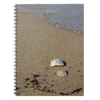 Seashell Seashore Notebook