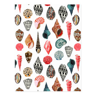 Seashell Shell del verano náutico/Andrea Lauren Postal