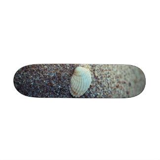 Seashell Skate Board Deck