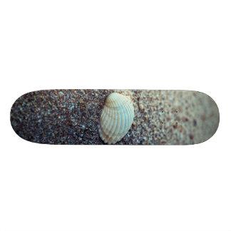 Seashell Skateboard