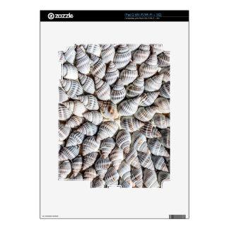 Seashell Starburst - Nautical Print Decal For The iPad 2