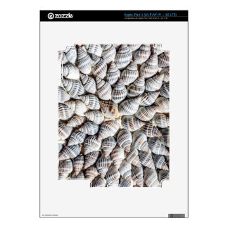 Seashell Starburst - Nautical Print iPad 3 Skin