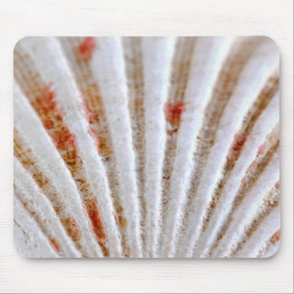 Seashell surface mouse pad