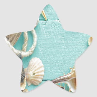 seashell,vintage,collage,turquoise,chic,trendy,fun star sticker