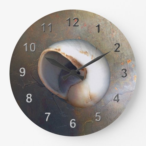Seashell wall clocks zazzle for Seashell wall clock