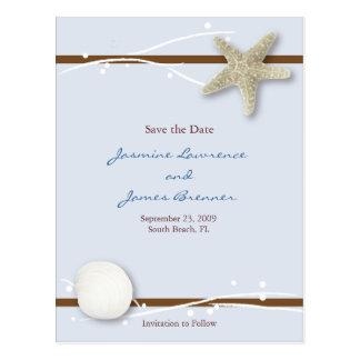Seashell with Ribbon Postcard