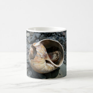 Seashell With Slug Mug