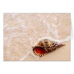 Seashell y ola oceánica felicitaciones