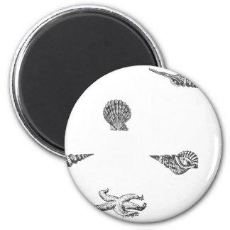 Seashells and Starfish pattern Magnet
