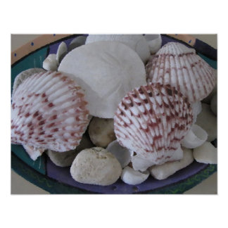 Seashells and Stones Oil Painting Poster