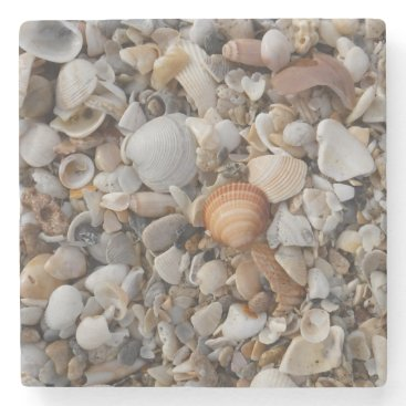 Seashells At The Sea Shore Stone Coaster