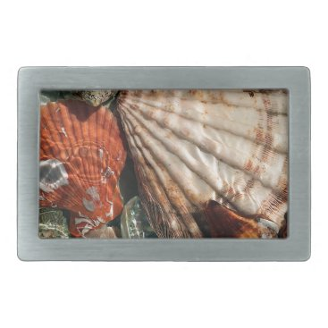 Beach Themed Seashells Belt Buckle