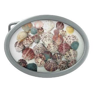 Seashells Belt Buckle