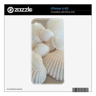 Seashells blancos soleados, playa del verano skins para iPhone 4S