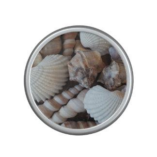 Seashells Bumpster Speaker, Summer Beach Bluetooth Speaker