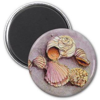 SEASHELLS by SHARON SHARPE 2 Inch Round Magnet