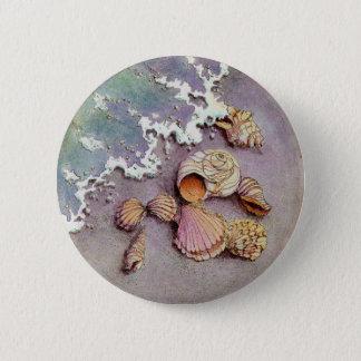 SEASHELLS by the SEASHORE by SHARON SHARPE Pinback Button