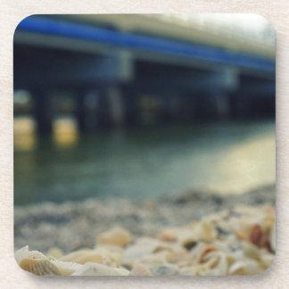 Seashells by the Seashore Coaster