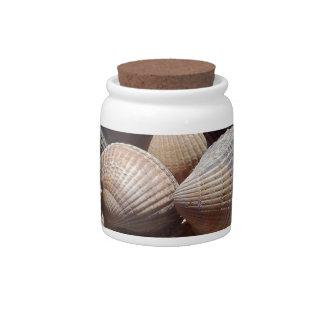 Seashells Candy Dish