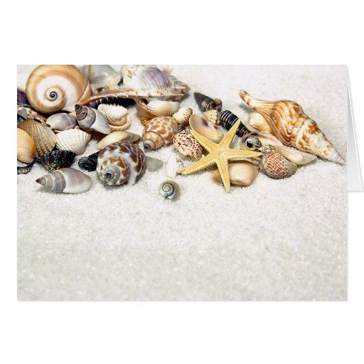 Seashells Card