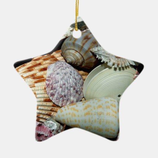 Seashells christmas tree ornament zazzle for Christmas tree ornaments made from seashells