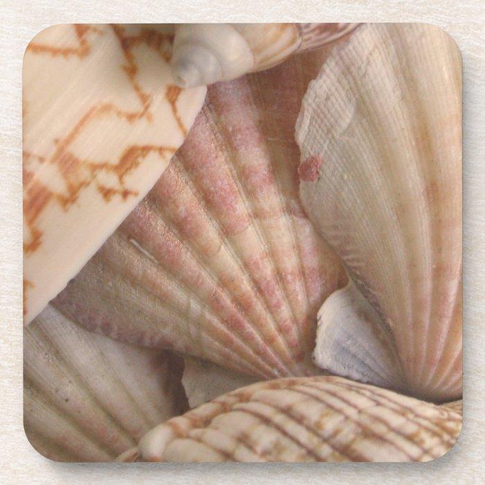 Seashells Coasters