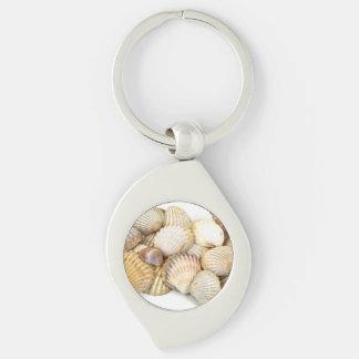 Seashells, Cockleshells, Scallops - Brown White Keychain